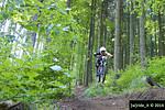 Sprung Baumstumpf Stage1 SET #1 Kouty